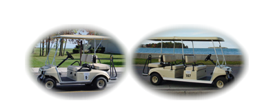 Put-in-Bay, Put In Bay Golf Carts